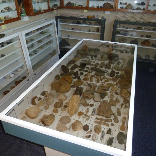 Glen Steen Fossil collection & Minerals Room